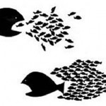 pez-grande-peces-pequenos
